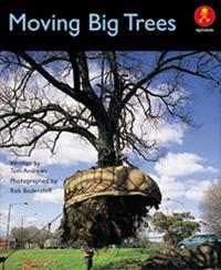 Moving Big Trees