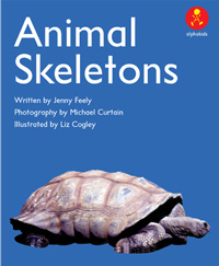 Animal Skeletons